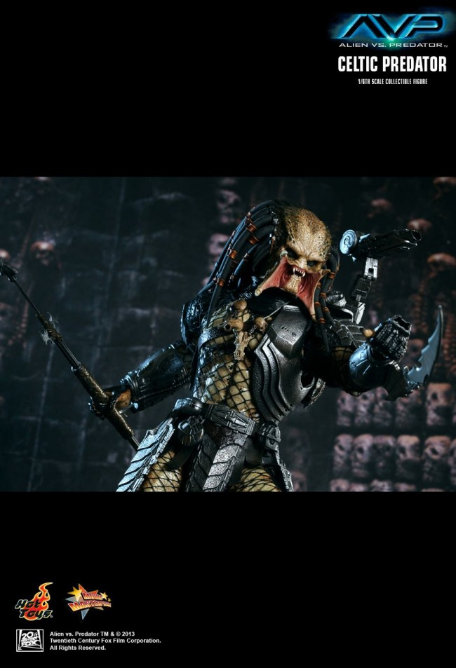 hottoys-avp-celtic-009