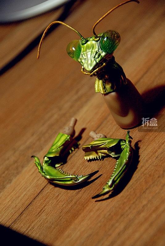 chaihe-submit-leondanbo-009