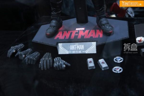 HT-sixth-antman-new(25)