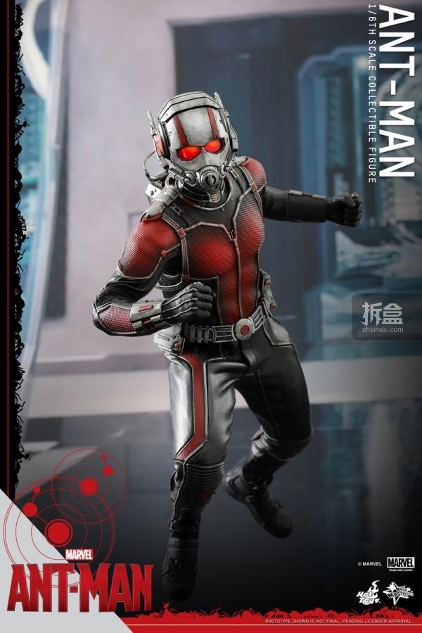 HT-sixth-antman-new(30)