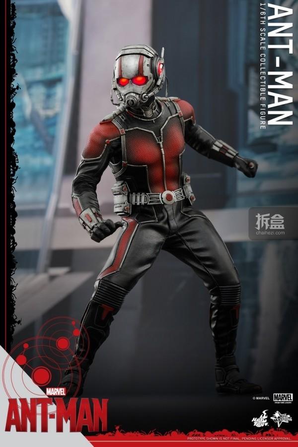 HT-sixth-antman-new(31)