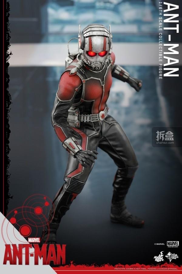 HT-sixth-antman-new(32)