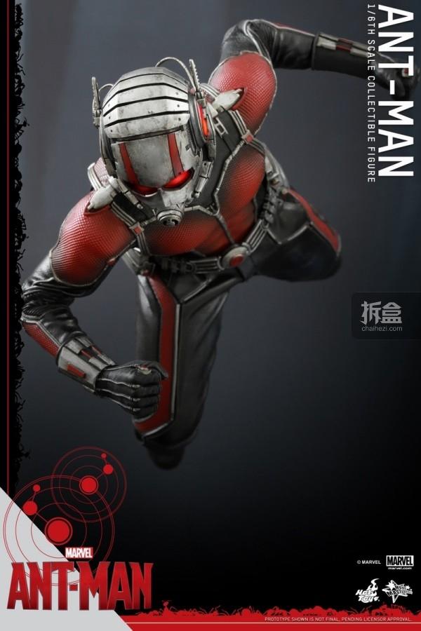 HT-sixth-antman-new(33)