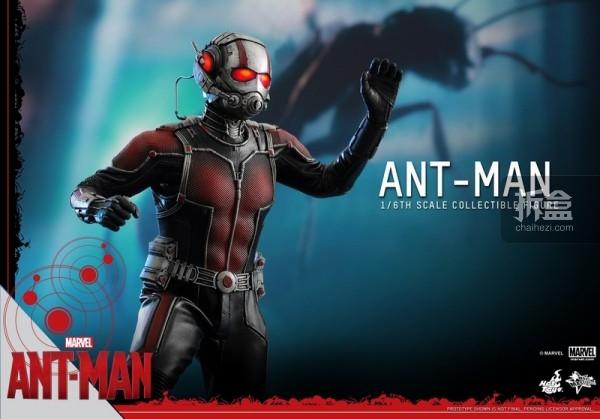HT-sixth-antman-new(35)