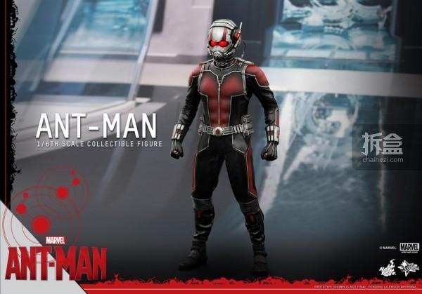 HT-sixth-antman-new(36)