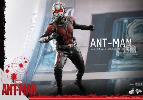 HT-sixth-antman-new(37)