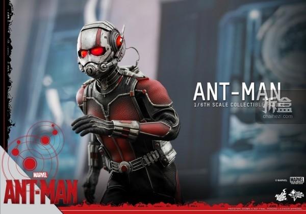 HT-sixth-antman-new(39)