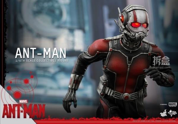 HT-sixth-antman-new(40)