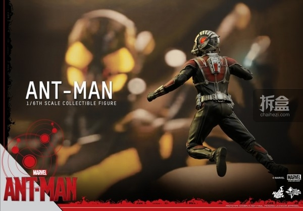 HT-sixth-antman-new(43)