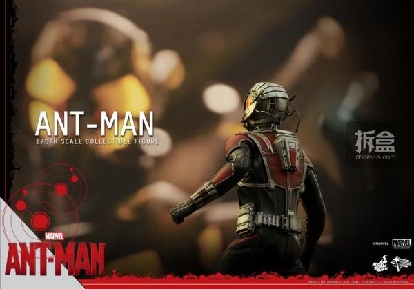 HT-sixth-antman-new(44)