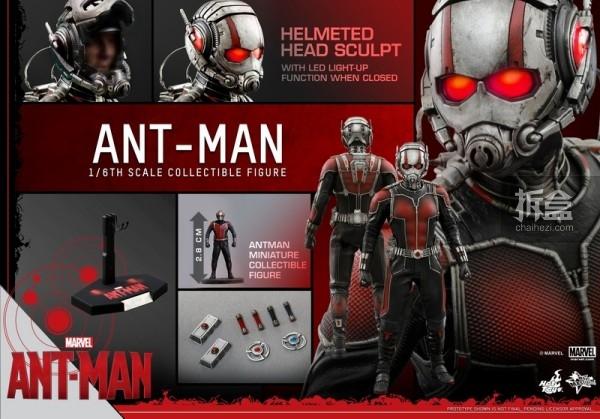 HT-sixth-antman-new(45)