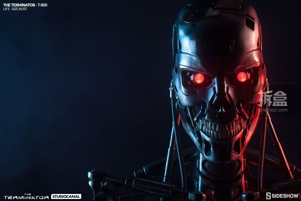 sideshow-Terminator-T800-life-bust (2)