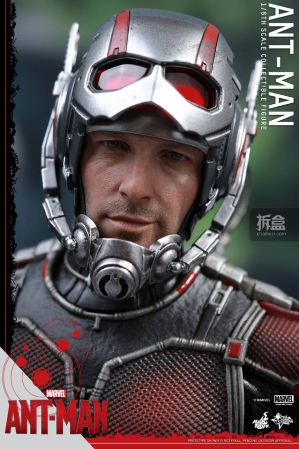 HT-sixth-antman-head-1