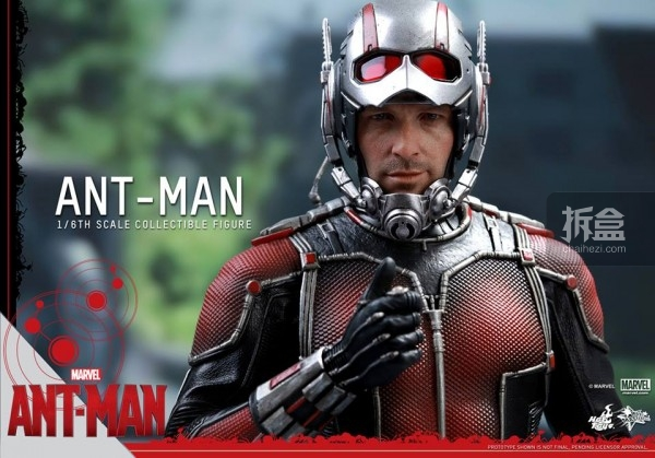 HT-sixth-antman-head-2