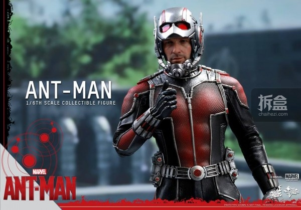 HT-sixth-antman-head-3