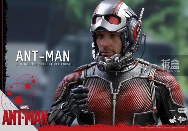HT-sixth-antman-head-4