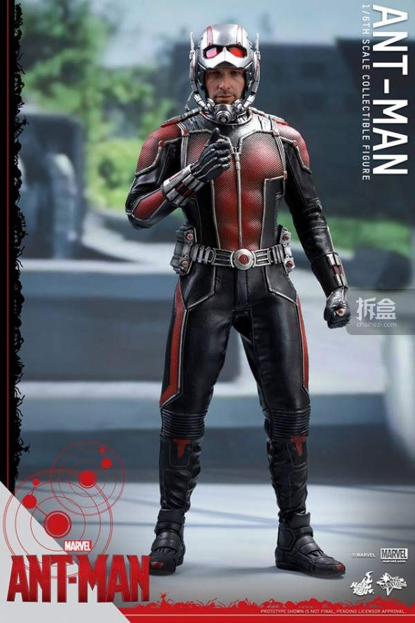 HT-sixth-antman-head-5