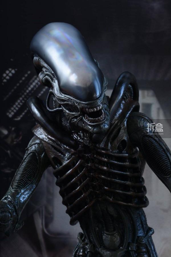 ht-big-chap-alien-bernd-20