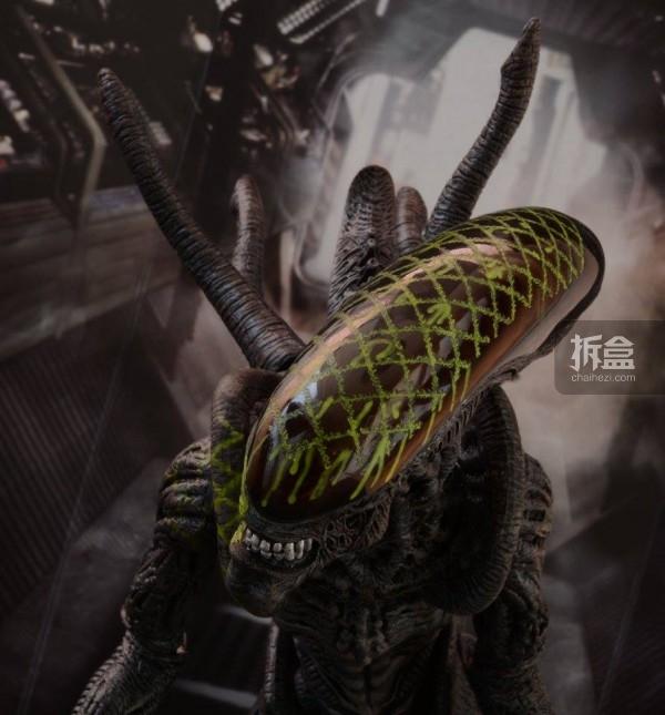ht-grid-alien-bernd-18