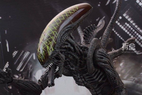 ht-grid-alien-bernd-5
