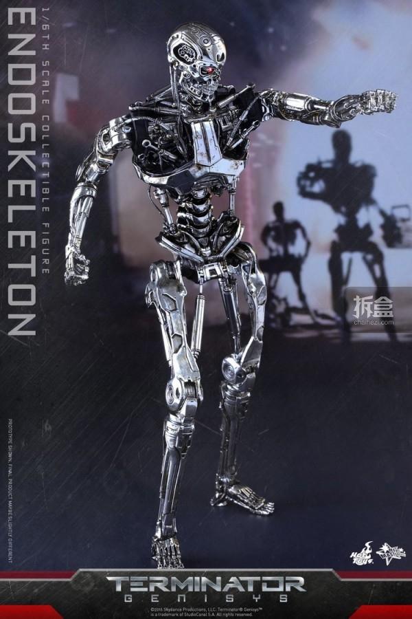 MMS352-ht-endoskeleton (1)