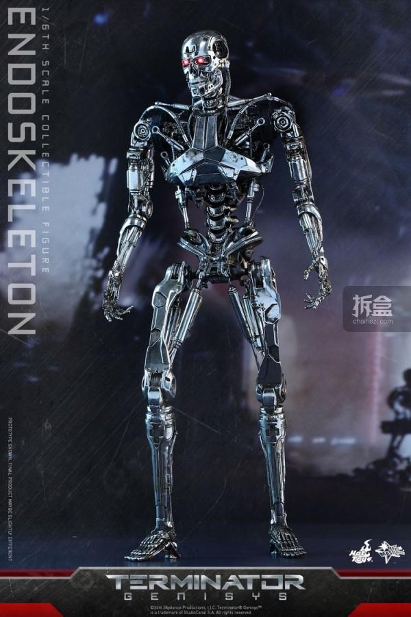 MMS352-ht-endoskeleton (4)