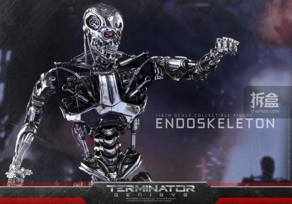 MMS352-ht-endoskeleton (9)