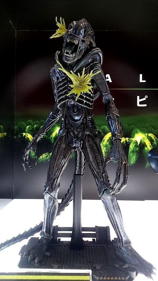 HotToys 1:6  Alien Warrior