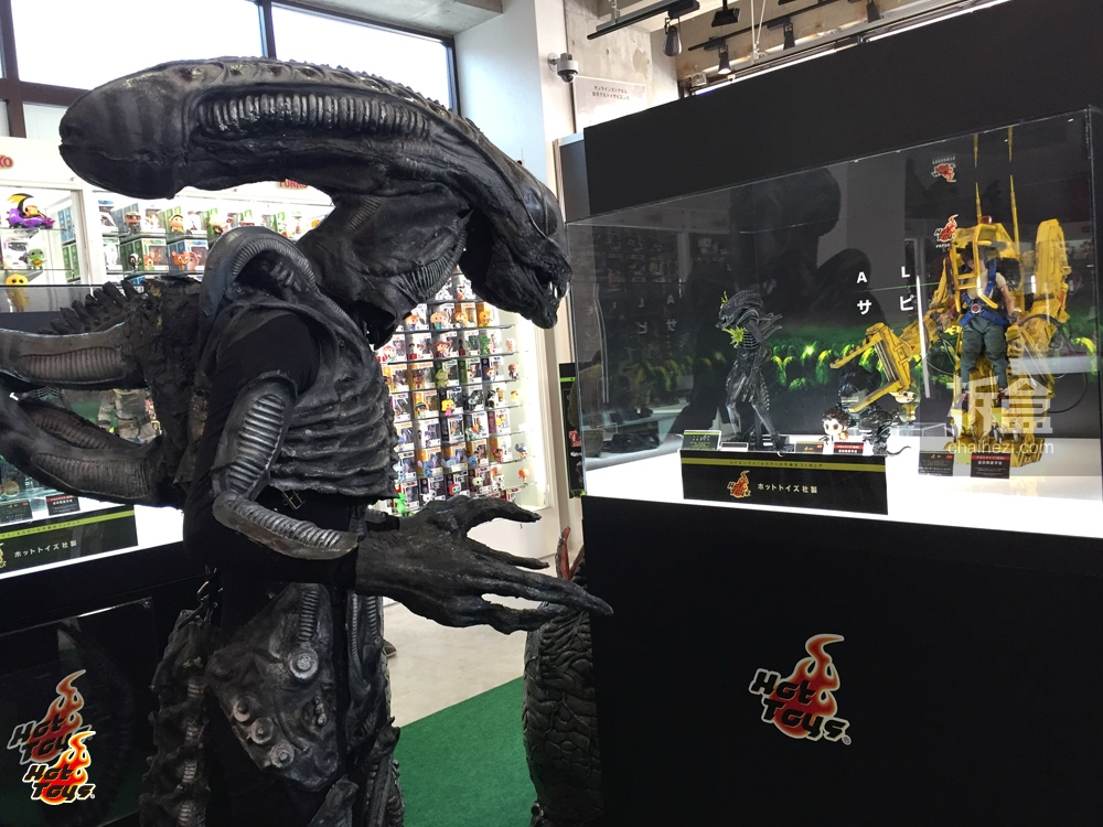 aliensapiens-ht (17)
