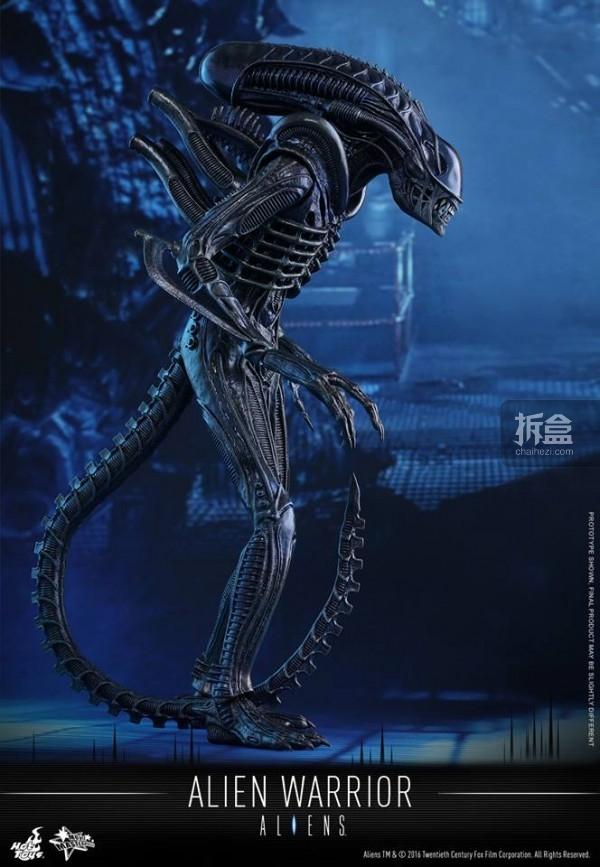 hottoys-2016-alienwarrior-10