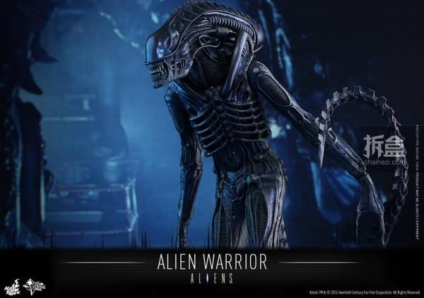 hottoys-2016-alienwarrior-11