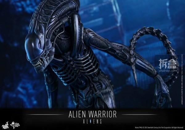 hottoys-2016-alienwarrior-13