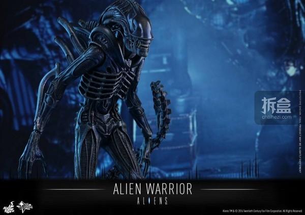 hottoys-2016-alienwarrior-7