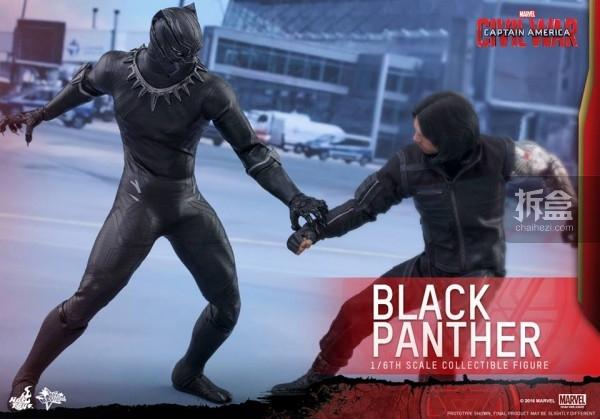 ht-black-panther-ca3-10