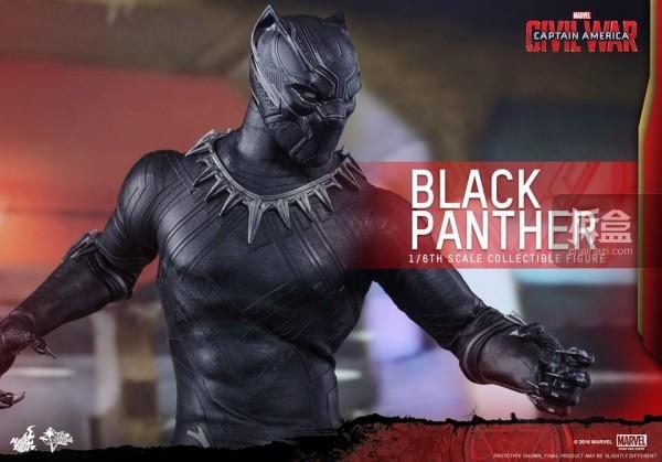 ht-black-panther-ca3-11