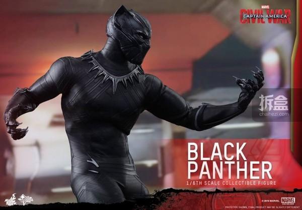 ht-black-panther-ca3-12