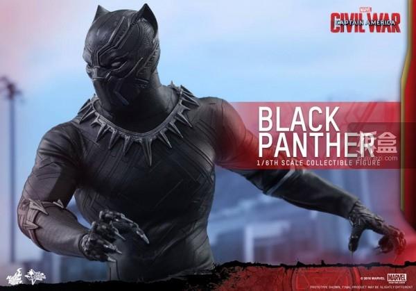 ht-black-panther-ca3-14