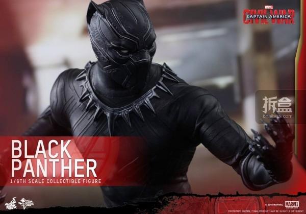 ht-black-panther-ca3-15