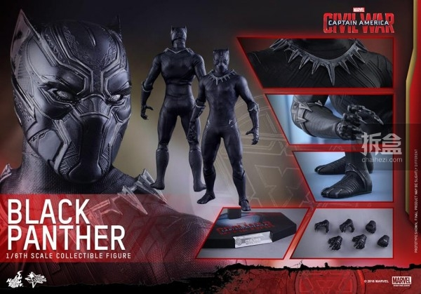 ht-black-panther-ca3-16
