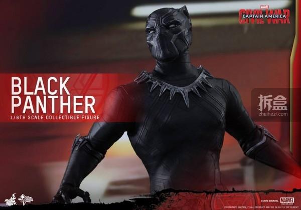 ht-black-panther-ca3-4