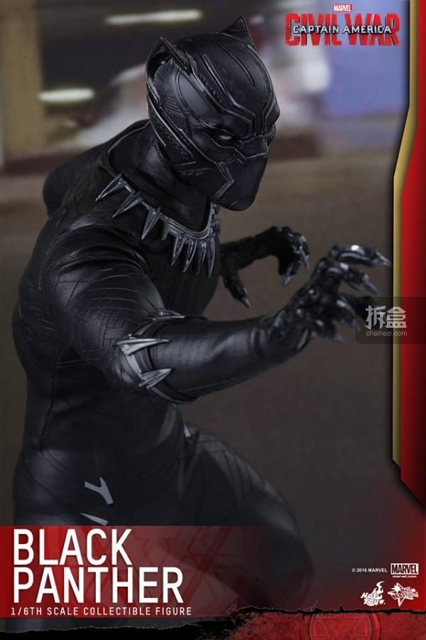 ht-black-panther-ca3-5