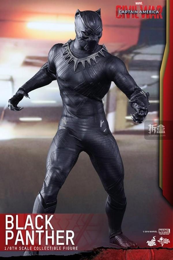 ht-black-panther-ca3-6