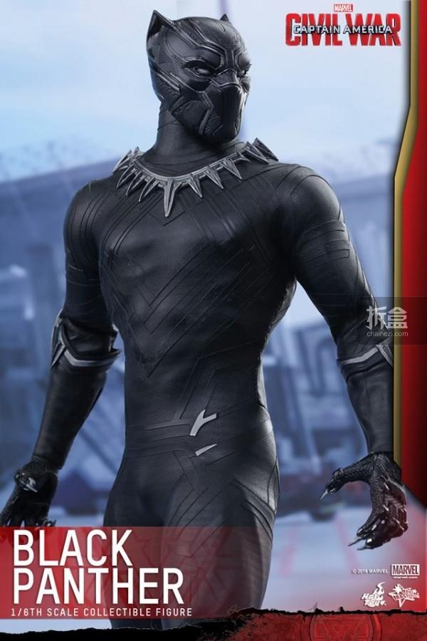 ht-black-panther-ca3-7