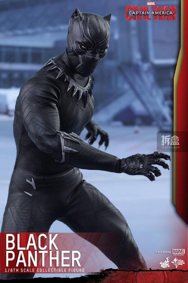 ht-black-panther-ca3-8