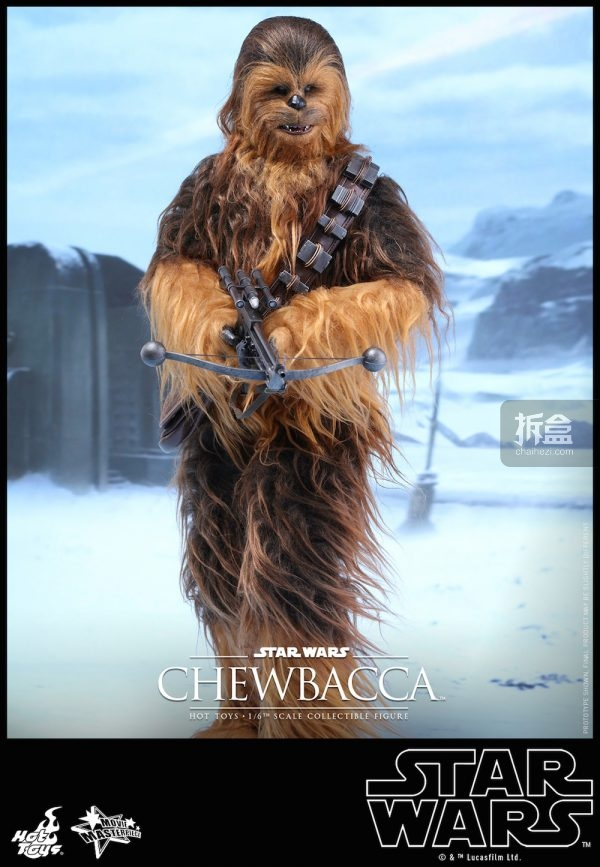 ht-starwars-old-chewbaca-set-3