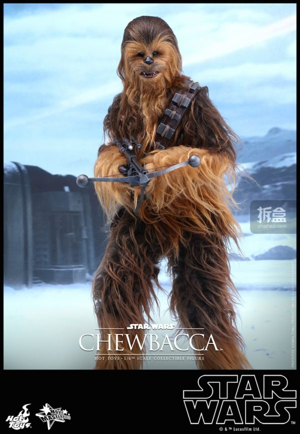 ht-starwars-old-chewbaca-set-4