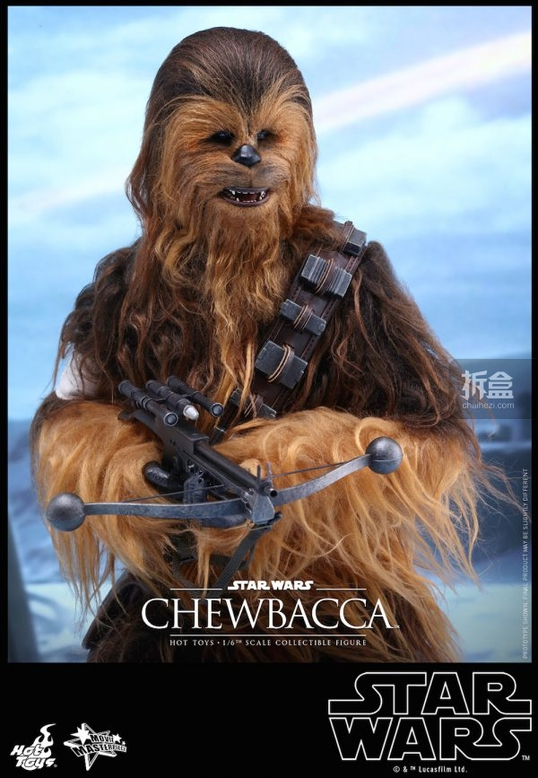 ht-starwars-old-chewbaca-set-7