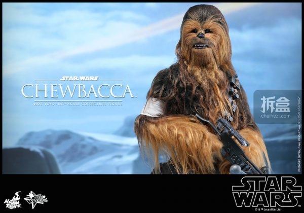ht-starwars-old-chewbaca-set-9