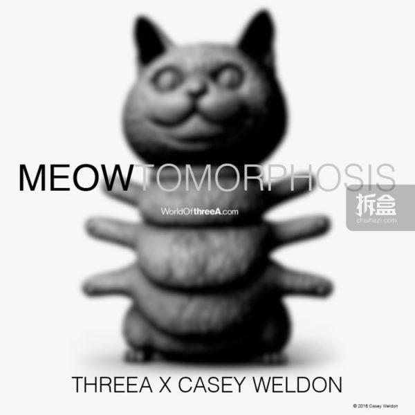 3A-casey-weldon-0