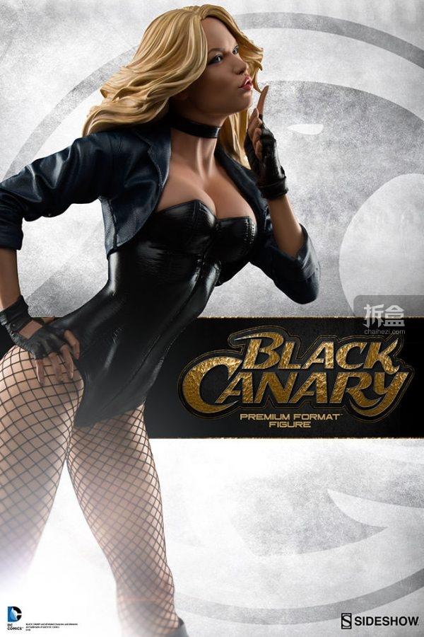 Black Canary-sideshow-pf (4)